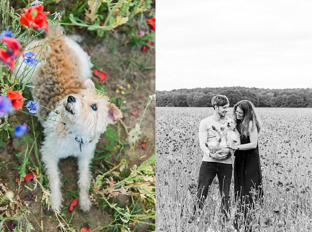 mh-hochzeitsfotografie-verlobung-im-gruenen-botropp-18.jpg
