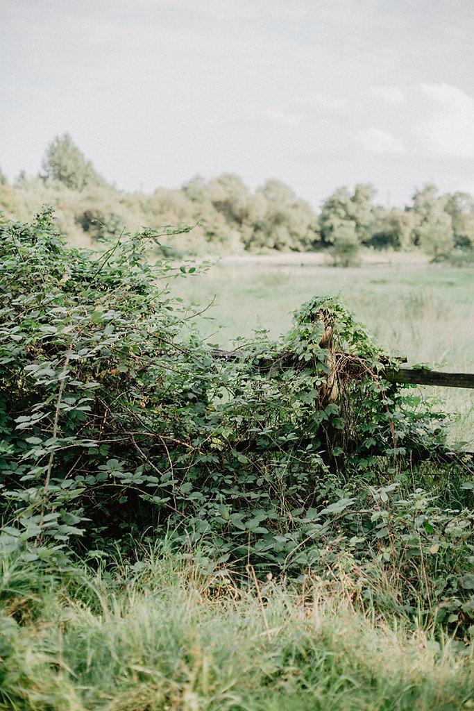 Melanie-Graas-Hochzeitsfotografie-Mitten-Im-Pott-Boho-DIY-Bottrop-Blumenkranz-72.jpg